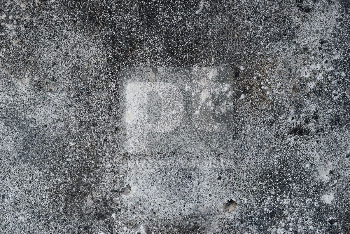 grey concrete background texture surface copy space for design or text, 13950, Abstract — PoweredTemplate.com