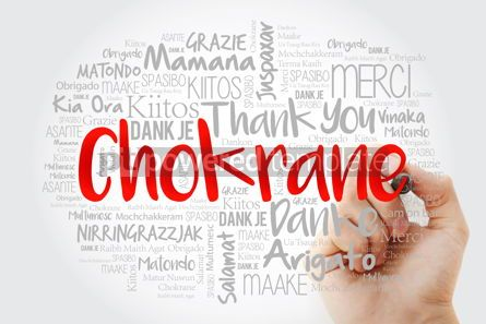Business: Chokrane Thank You in Arabic - Middle East North Africa Word #14007