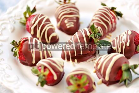 Food & Drink: Delicious fresh strawberries in milk and white chocolate #14116