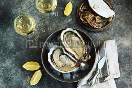 Food & Drink: Giant fresh uncooked oysters in a shell with lemon on ice Healthly food Top view #14256