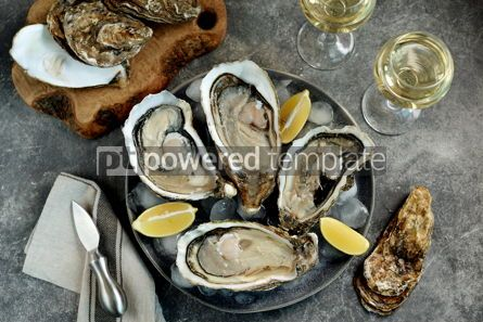 Food & Drink: Giant fresh uncooked oysters in a shell with lemon on ice Healthly food Top view #14260