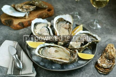 Food & Drink: Giant fresh uncooked oysters in a shell with lemon on ice Healthly food #14261