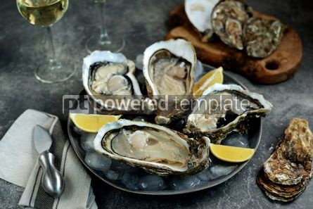 Food & Drink: Giant fresh uncooked oysters in a shell with lemon on ice Healthly food #14262