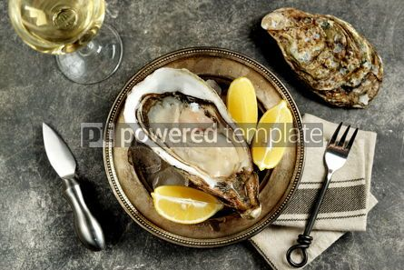 Food & Drink: Giant fresh uncooked oyster in a shell with lemon on ice Healthly food Top view #14289