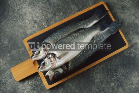Food & Drink: Three fresh raw sea bass on a serving board on a gray background Top view #14360