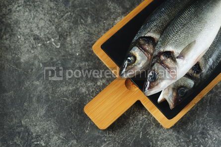 Food & Drink: Three fresh raw sea bass on a serving board on a gray background Top view Copy space #14363