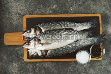 Food & Drink: Three fresh raw sea bass on a serving board on a gray background Top view #14364