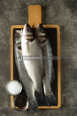 Food & Drink: Three fresh raw sea bass on a serving board on a gray background Top view #14365