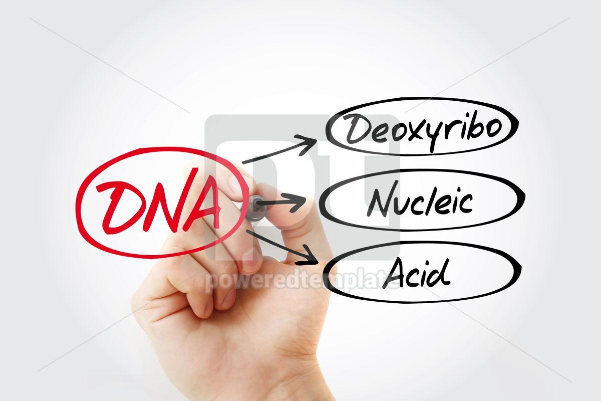 DNA - Deoxyribonucleic Acid acronym medical concept background, 14796, Education — PoweredTemplate.com
