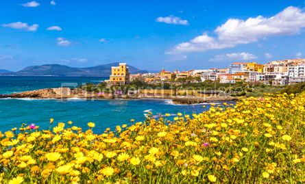 Arts & Entertainment: Mediterranean seacoast in Alghero city Sardinia Italy #15331