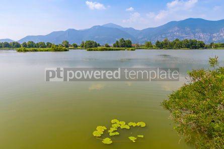 Nature: Natural Reserve Torbiere del Sebino Province of Brescia Italy #15421