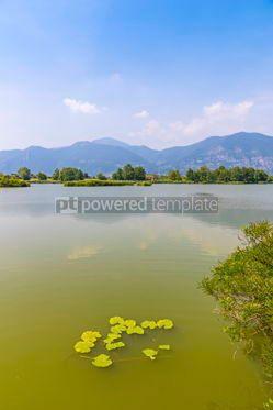 Nature: Natural Reserve Torbiere del Sebino Province of Brescia Italy #15422