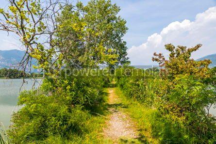 Nature: Natural Reserve Torbiere del Sebino Province of Brescia Italy #15423