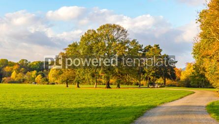 Nature: Rosenthal forest park in Leipzig city Saxony Germany #15429