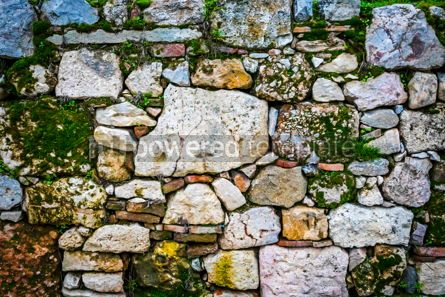 Architecture : Ancient wall made of natural rocks with plants between blocks #15505