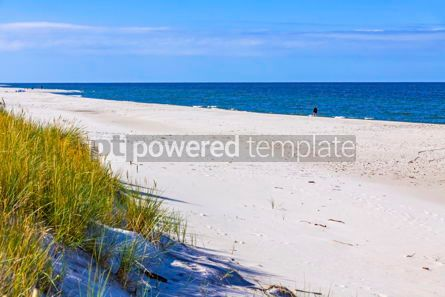 Nature: Beautiful sandy beach on Hel Peninsula Baltic sea Poland #15515