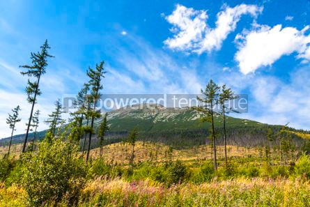 Nature: Picturesque view of Tatra mountains Slovakia #15521