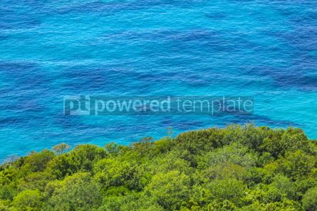 Nature: Adriatic seacoast in Budvan Riviera Montenegro #15563
