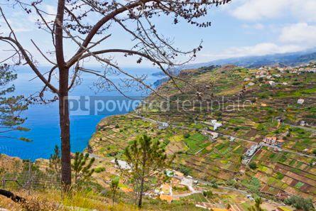Nature: Atlantic Ocean coast on Madeira island Portugal #15704