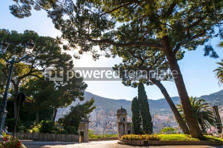 Nature: City garden on Avenue de la Porte Neuve in Monaco #15714