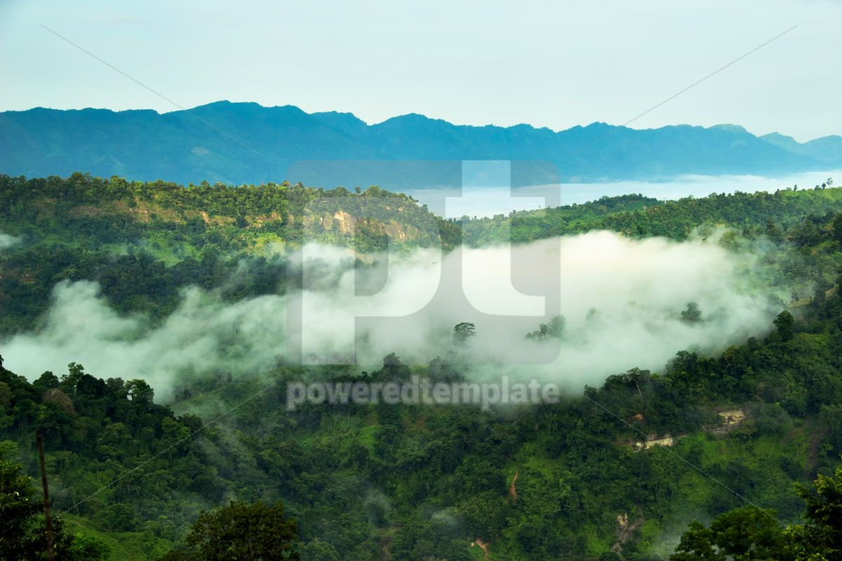 Forested Mountain Valley in Cloud Fog During Summer Scenic Natural Landscape View Greener Pastures, 15889, Nature — PoweredTemplate.com