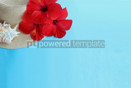 Holidays: Blue summer background with hibiscus flowers #15900