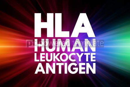 Business: HLA - Human Leukocyte Antigen acronym medical concept backgroun #15958
