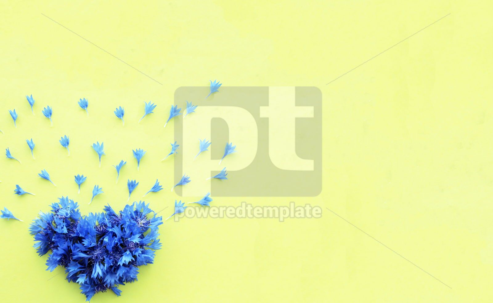 Cornflower floral heart on yellow background, 16392, Holidays — PoweredTemplate.com