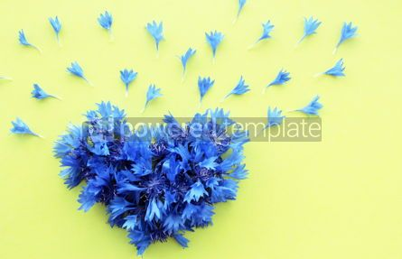 Holidays: Cornflower floral heart #16394
