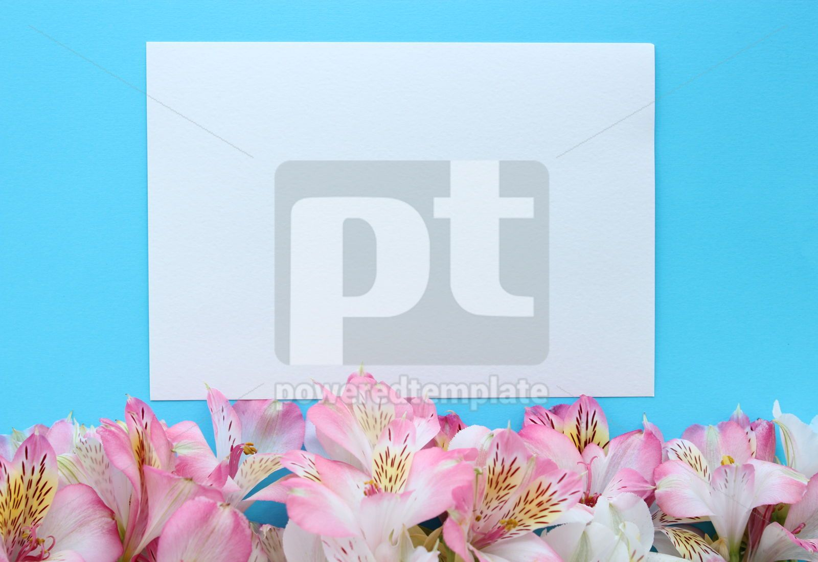 Beautiful azure summer card with pink and white flowers, 16395, Holidays — PoweredTemplate.com