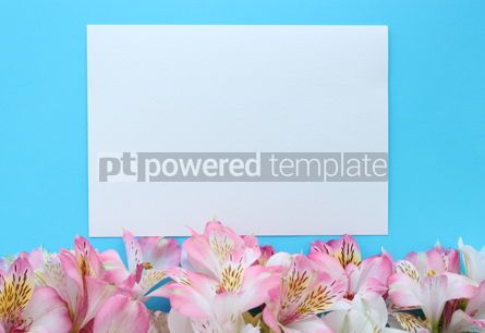 Holidays: Beautiful azure summer card with pink and white flowers #16395