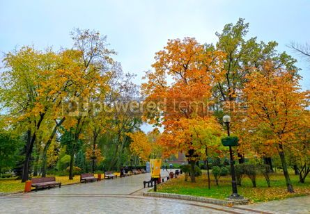Nature: Autumn view of Shevchenko Park in Kyiv Ukraine #16437