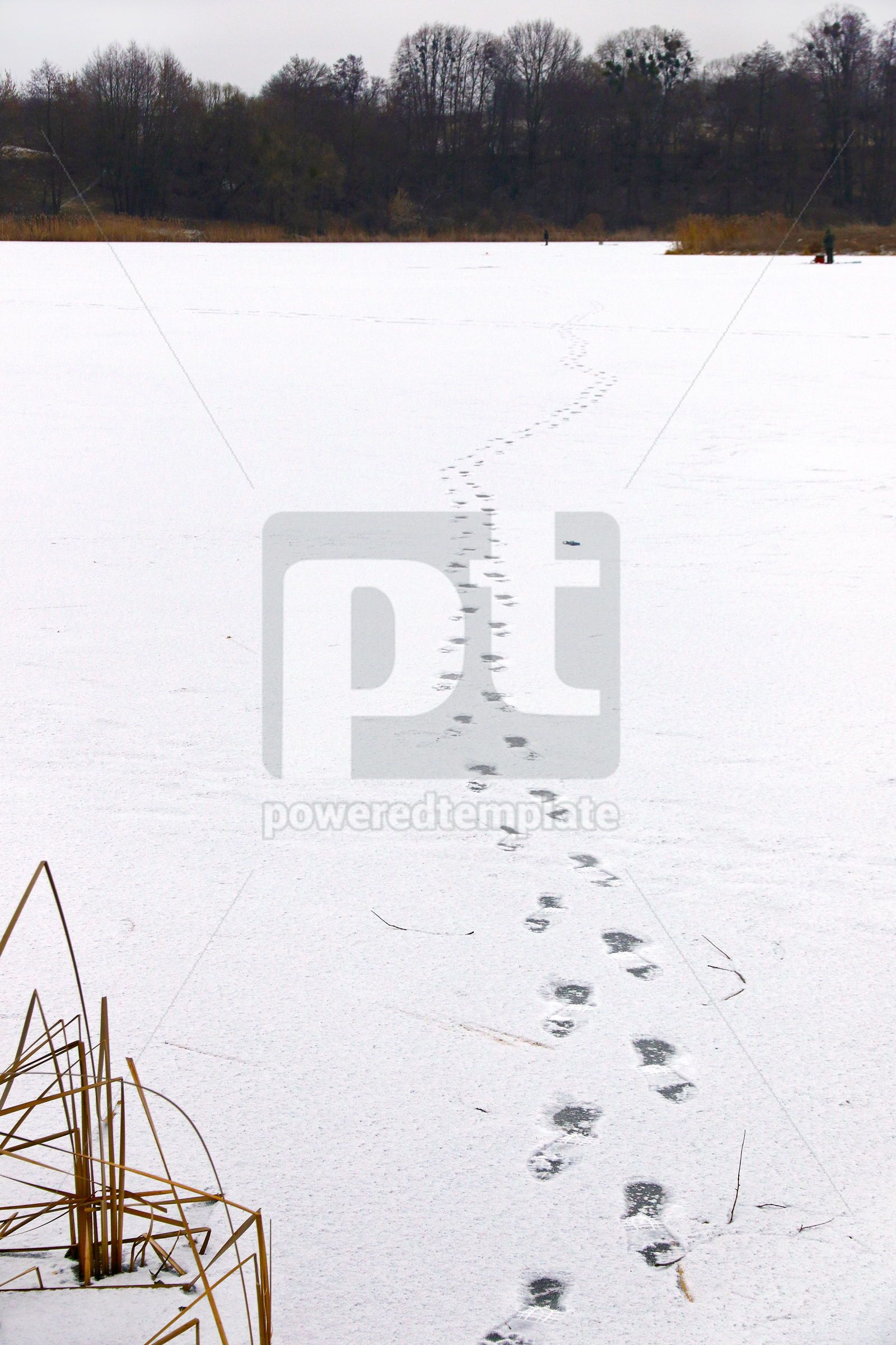 Footprints on the ice of a frozen lake, 16446, Nature — PoweredTemplate.com