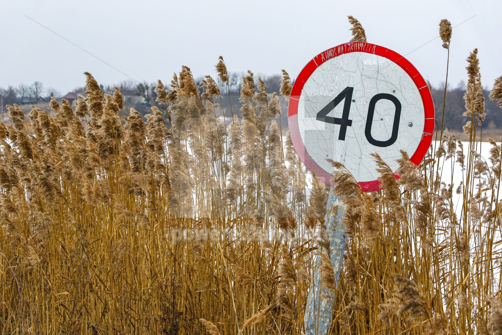 Old speed limit sign on the side of the road, 16447, Nature — PoweredTemplate.com