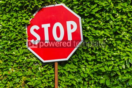 Transportation: Red hexagonal stop sign on metal pole #16464