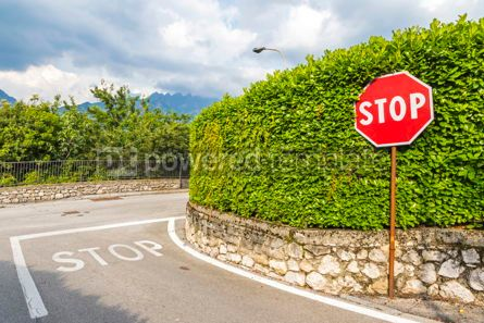 Transportation: Red hexagonal stop sign on metal pole #16465