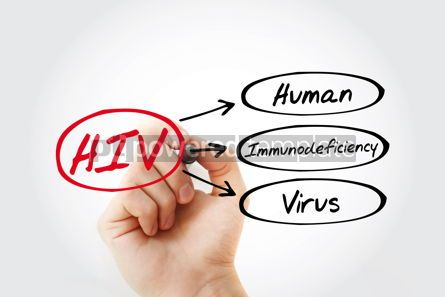 Business: HIV - Human Immunodeficiency Virus acronym #17000