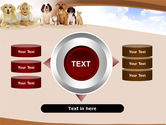 Pets Free PowerPoint Template#12