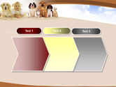 Pets Free PowerPoint Template#16