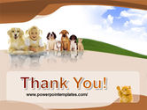 Pets Free PowerPoint Template#20