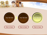 Pets Free PowerPoint Template#5