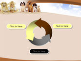 Pets Free PowerPoint Template#9