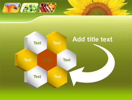 Sunflower PowerPoint Template Slide 11