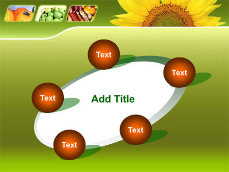 Sunflower PowerPoint Template Slide 14