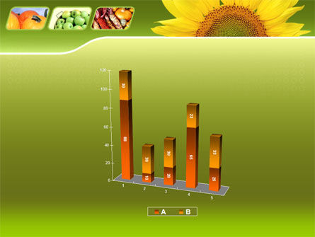 Sunflower PowerPoint Template Slide 17
