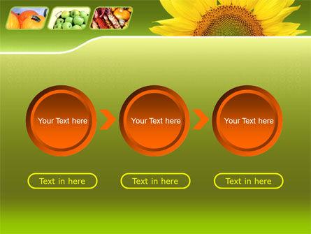 Sunflower PowerPoint Template Slide 5