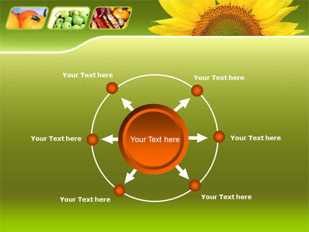 Sunflower PowerPoint Template Slide 7