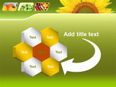 Sunflower PowerPoint Template#11