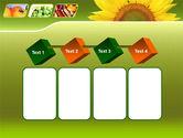Sunflower PowerPoint Template#18