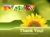 Sunflower PowerPoint Template#20